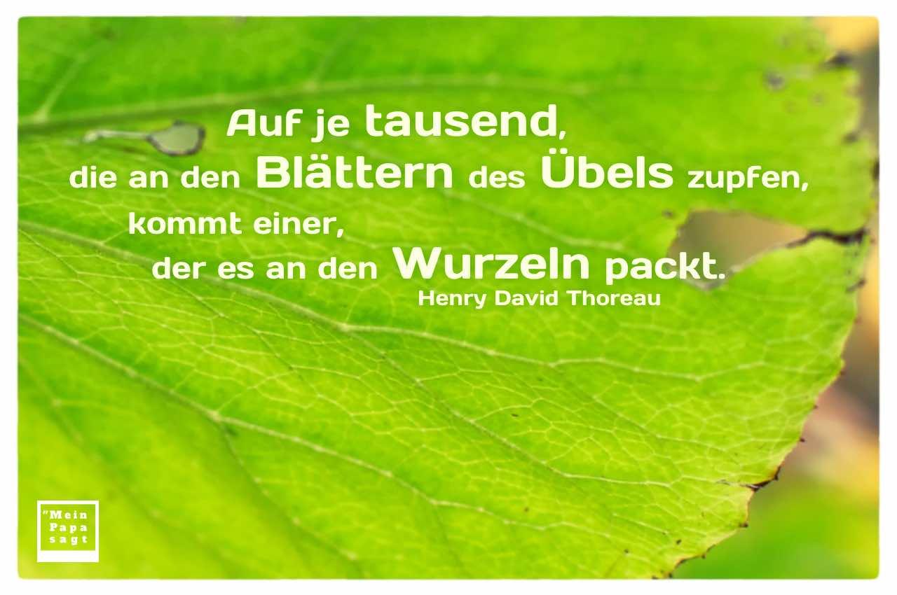 löchriges Blatt mit Thoreau Zitate Bilder: Auf je tausend, die an den Blättern des Übels zupfen, kommt einer, der es an den Wurzeln packt. Henry David Thoreau