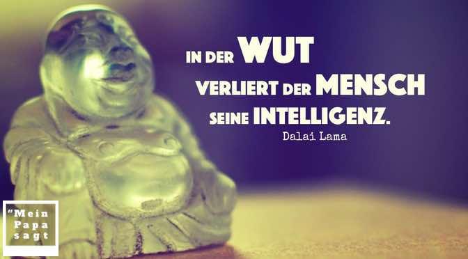 In der Wut verliert der Mensch seine Intelligenz
