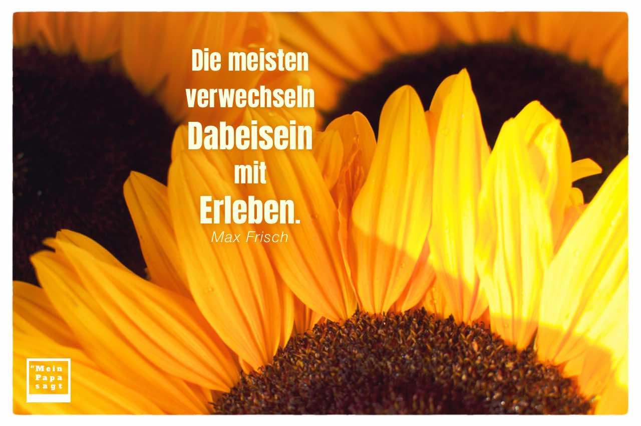 Sonnenblumen mit Frisch Zitate Bildern: Die meisten verwechseln Dabeisein mit Erleben. Max Frisch