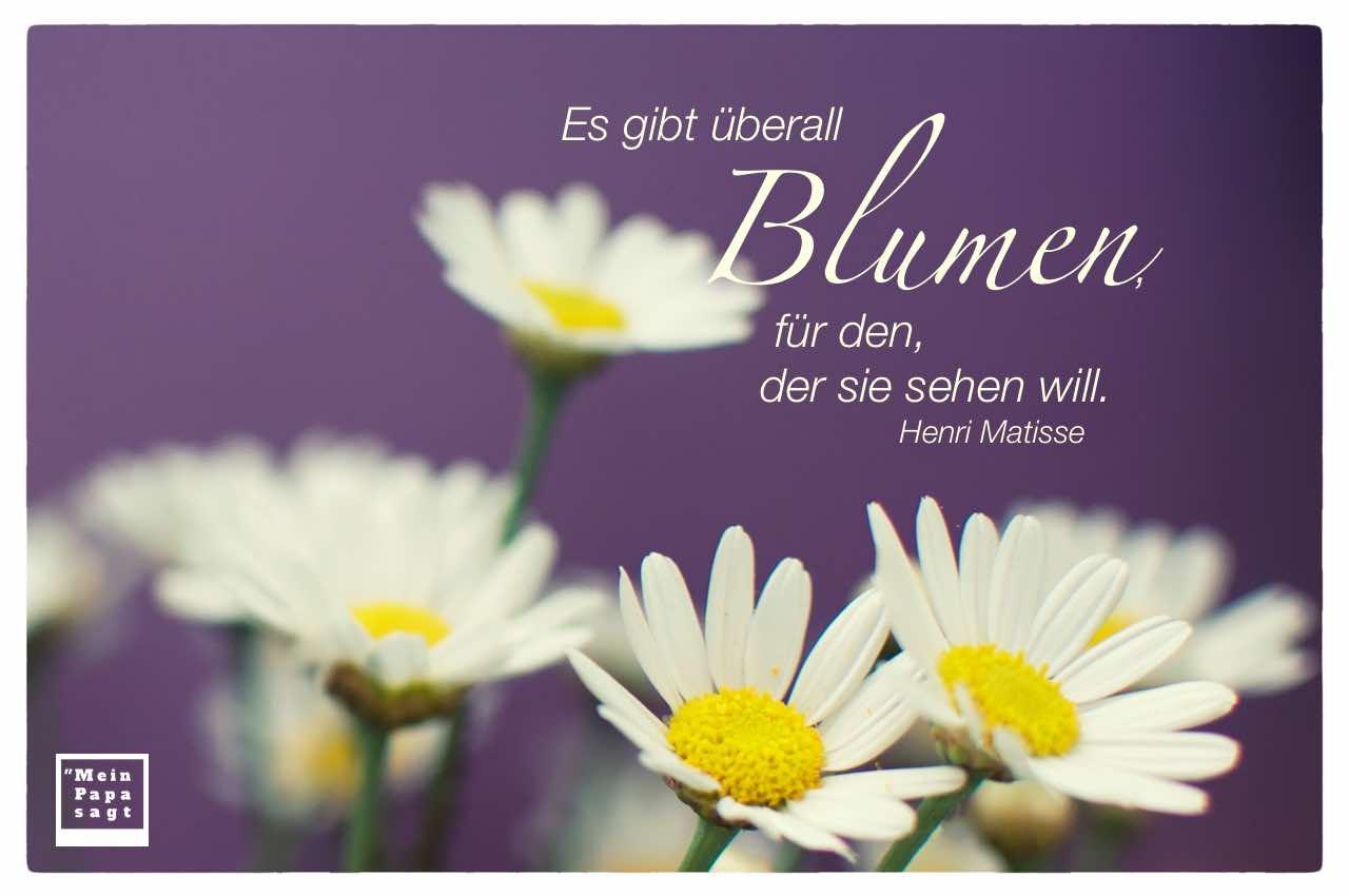 Es Gibt überall Blumen Für Den Der Sie Sehen Will Zitate