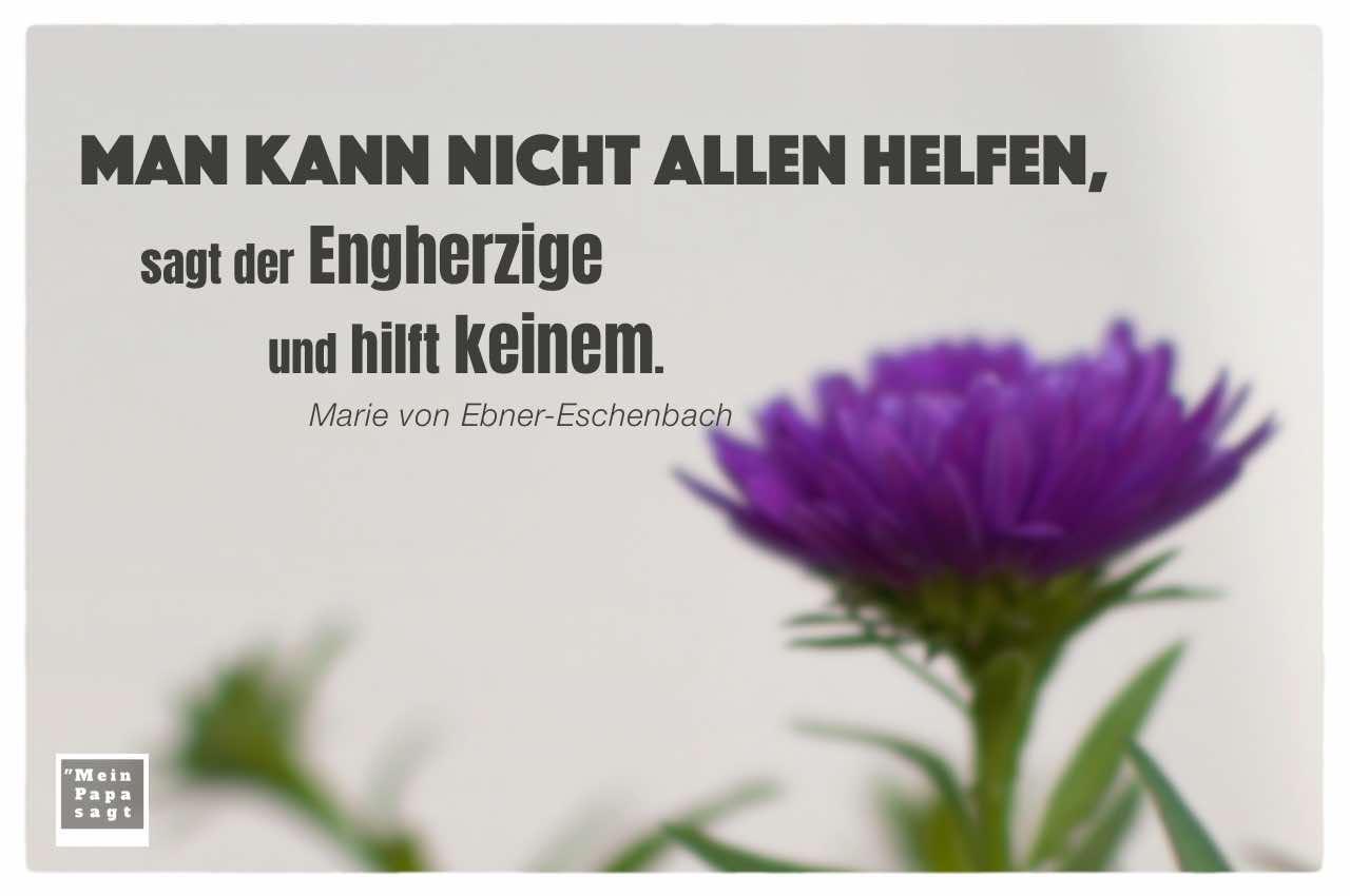 Astern mit Ebner-Eschenbach Zitate Bilder: Man kann nicht allen helfen, sagt der Engherzige und hilft keinem. Marie von Ebner-Eschenbach