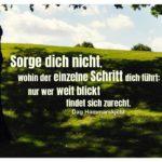 Hügel mit Horizont und Hammarskjöld Zitate Bilder: Sorge dich nicht, wohin der einzelne Schritt dich führt: nur wer weit blickt findet sich zurecht. Dag Hammarskjöld