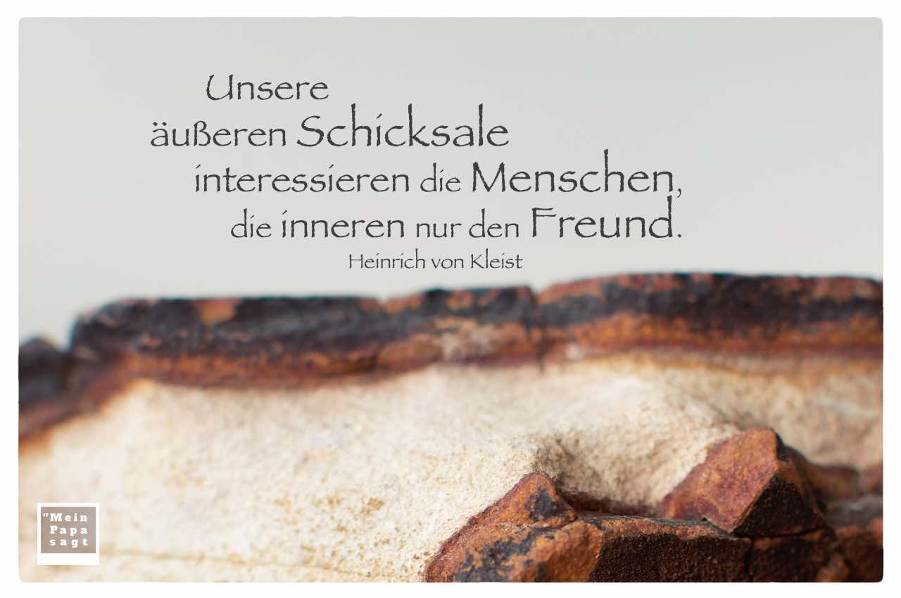Stein mit von Kleist Zitate Bilder: Unsere äußeren Schicksale interessieren die Menschen, die inneren nur den Freund. Heinrich von Kleist