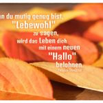 """Herbstlaub mit Coelho Zitate Bilder: Wenn du mutig genug bist, """"Lebewohl"""" zu sagen, wird das Leben dich mit einem neuen """"Hallo"""" belohnen. Paulo Coelho"""