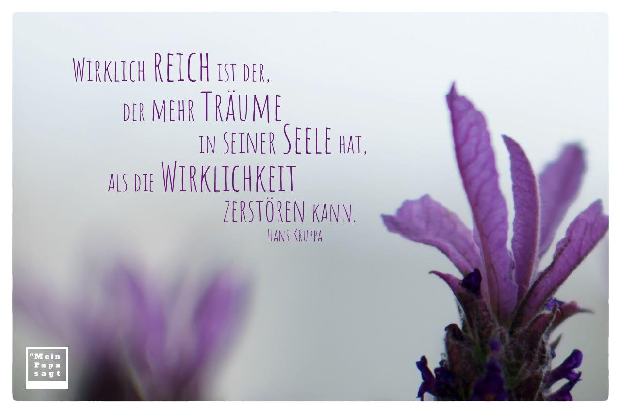 Lavendel mit Kruppa Zitate Bilder: Wirklich reich ist der, der mehr Träume in seiner Seele hat, als die Wirklichkeit zerstören kann. Hans Kruppa
