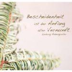 Tannenzweig mit Anzengruber Zitate Bilder: Bescheidenheit ist der Anfang aller Vernunft. Ludwig Anzengruber