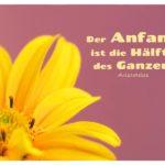 Blüte mit Aristoteles Zitate Bilder: Der Anfang ist die Hälfte des Ganzen. Aristoteles