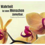Orchideen mit Bachmann Zitate Bilder: Die Wahrheit ist dem Menschen zumutbar. Ingeborg Bachmann