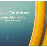 Schlauch mit Schmidt Zitate Bilder: Nur die Dummen zweifeln nicht. Helmut Schmidt
