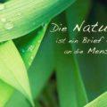 Die Natur ist ein Brief Gottes an die Menschheit