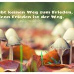 Pilze mit Gandhi Zitate Bilder: Es gibt keinen Weg zum Frieden, denn Frieden ist der Weg. Mahatma Gandhi