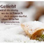 Schneebedeckter Pilz mit Adorno Lebensweisheiten in Bildern: Geliebt wirst du einzig, wo du schwach dich zeigen darfst, ohne Stärke zu provozieren. Theodor W. Adorno