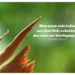 gebrochenes Holz mit Storm Lebensweisheiten in Bildern: Man muss sein Leben aus dem Holz schnitzen, das man zur Verfügung hat. Theodor Storm