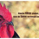 Hahn mit Fontane Zitate Bilder: Manche Hähne glauben, dass die Sonne ihretwegen aufgeht. Theodor Fontane