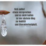 Eiszapfen an Zweig mit Hebbel Zitate Bildern: Sich selbst etwas versprechen und es nicht halten ist der nächste Weg zur Nullität und Charakterlosigkeit. Friedrich Hebbel