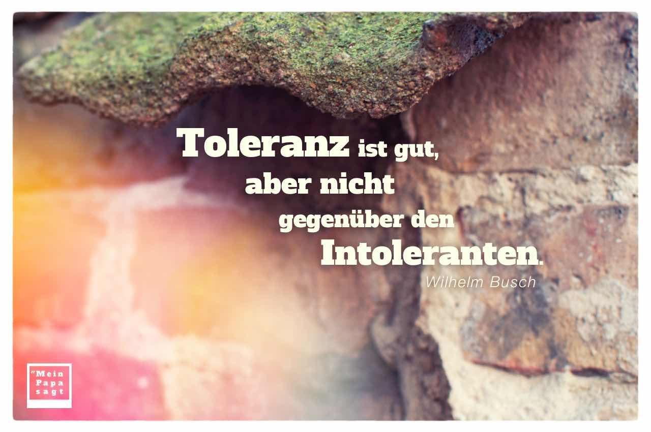 Steinmauer mit Busch Zitate Bilder: Toleranz ist gut, aber nicht gegenüber den Intoleranten. Wilhelm Busch