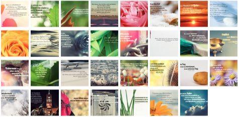 Übersichtsbild. Bilder Galerie mit Lebensweisheiten, Weisheiten, Zitate Bilder, Sprichwörter und Sprüche Bilder des Tages Januar 2019