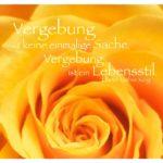Orange Rosenblüte mit Luther King Zitate Bilder: Vergebung ist keine einmalige Sache, Vergebung ist ein Lebensstil. Martin Luther King