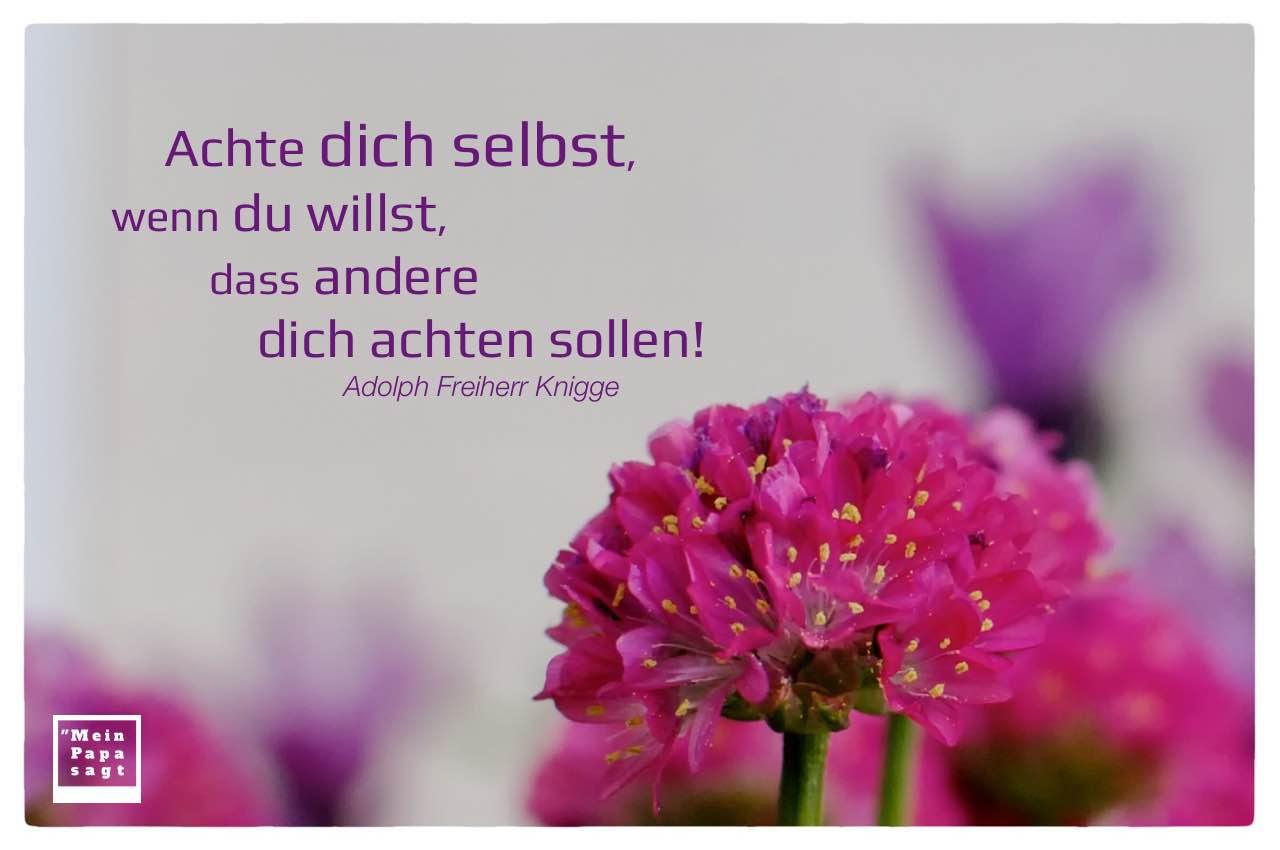 Blüten mit Knigge Lebensweisheiten und Bildern: Achte dich selbst, wenn du willst, dass andere dich achten sollen! Adolph Freiherr Knigge