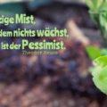 Der einzige Mist, auf dem nichts wächst, ist der Pessimist