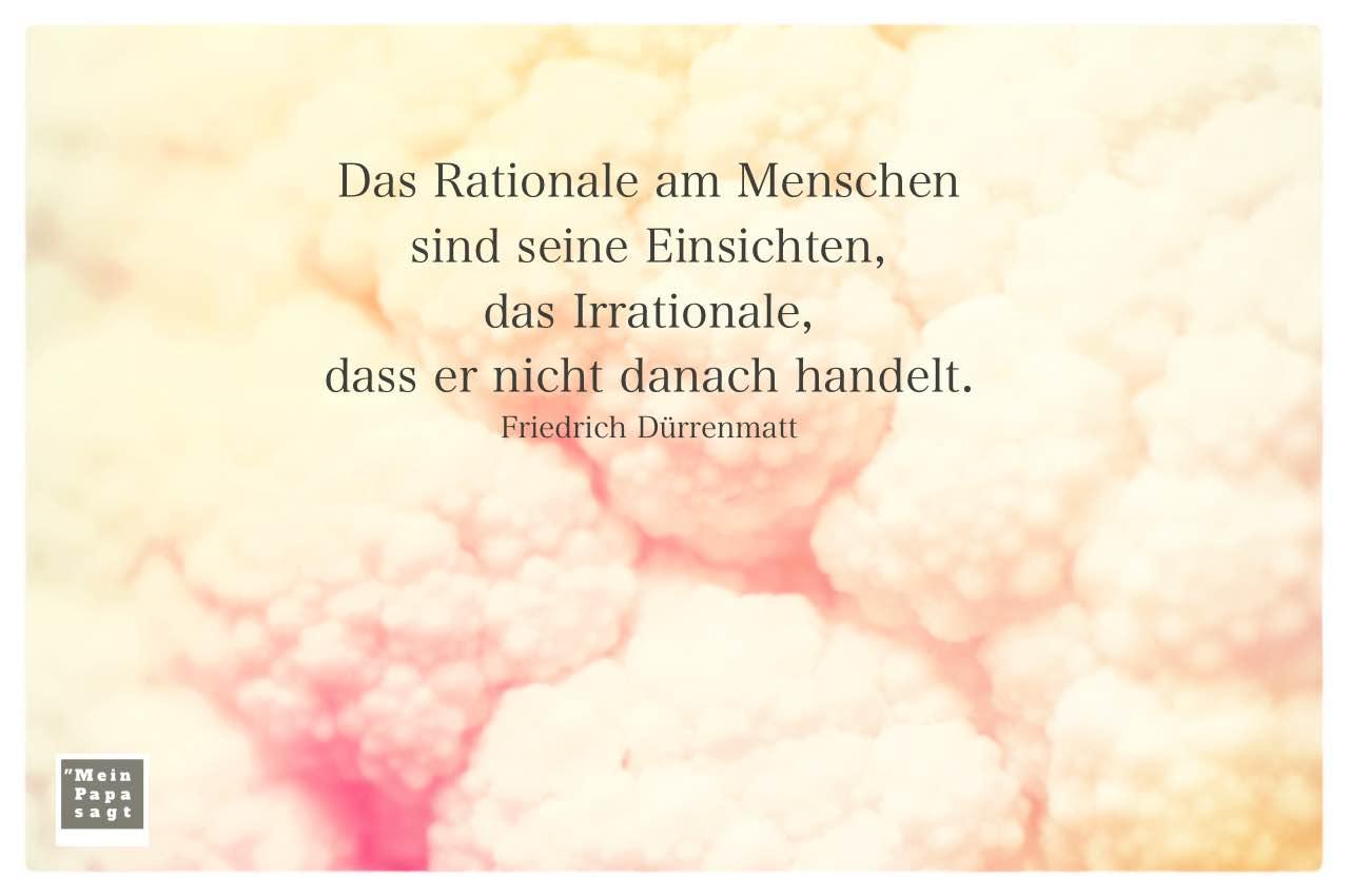eingefärbter Blumenkohl mit Dürrenmatt Zitate und Bilder: Das Rationale am Menschen sind seine Einsichten, das Irrationale, dass er nicht danach handelt. Friedrich Dürrenmatt