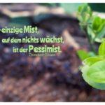 Erde mit Pflanzen und Heuss Zitate Bilder: Der einzige Mist, auf dem nichts wächst, ist der Pessimist. Theodor Heuss