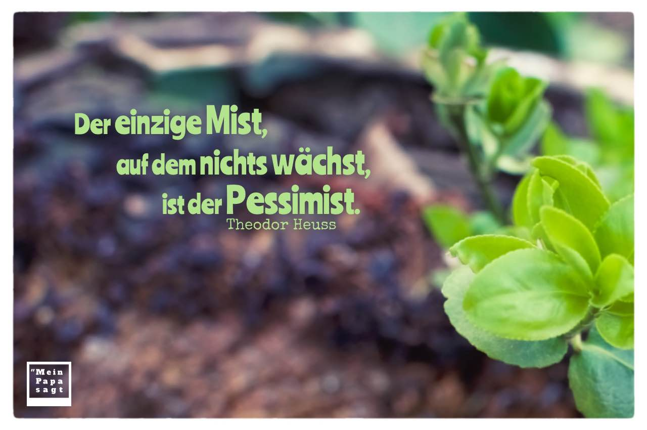Erde mit Pflanzen und Mein Papa sagt Heuss Zitate Bilder: Der einzige Mist, auf dem nichts wächst, ist der Pessimist. Theodor Heuss