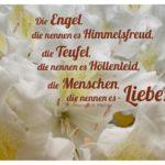 Blüten mit Heine Zitate und Bilder: Die Engel, die nennen es Himmelsfreud, die Teufel, die nennen es Höllenleid, die Menschen, die nennen es - Liebe! Heinrich Heine