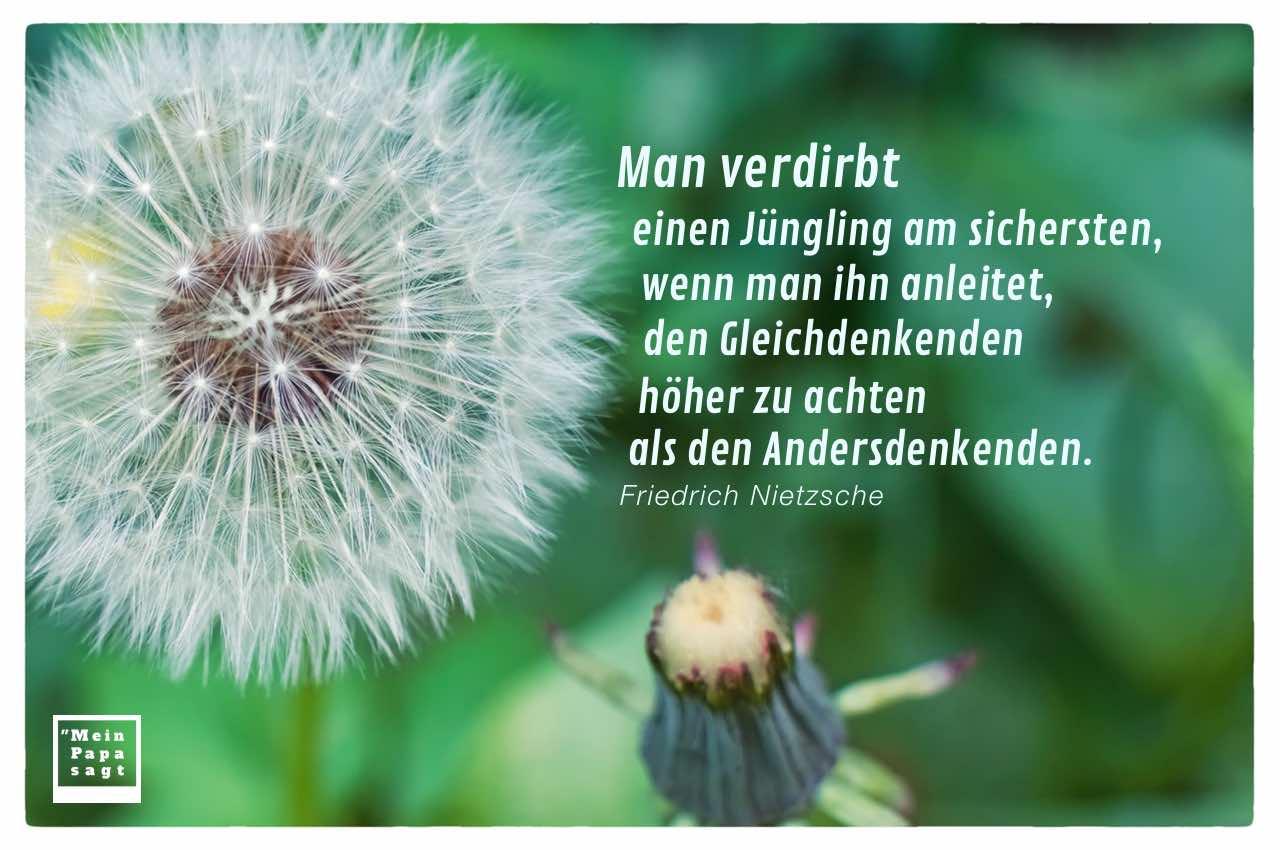 Löwenzahn mit Nietzsche Lebensweisheiten in Bildern: Man verdirbt einen Jüngling am sichersten, wenn man ihn anleitet, den Gleichdenkenden höher zu achten als den Andersdenkenden. Friedrich Nietzsche