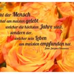 Orange Rosen mit Rousseau Zitate Bilder: Nicht der Mensch hat am meisten gelebt, welcher die höchsten Jahre zählt, sondern der, welcher sein Leben am meisten empfunden hat. Jean-Jacques Rousseau