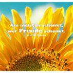 Sonnenblume mit Mutter Teresa Zitate Bilder: Am meisten schenkt, wer Freude schenkt. Mutter Teresa