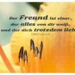 Blütenkelch mit Hubbard Zitate Bilder: Der Freund ist einer, der alles von dir weiß, und der dich trotzdem liebt. Elbert Hubbard