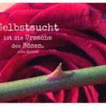 Dornen Rose mit Knittel Zitate Bilder: Selbstsucht ist die Ursache des Bösen. John Knittel