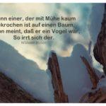 Baum mit Schnee und Busch Zitate Bilder: Wenn einer, der mit Mühe kaum Gekrochen ist auf einen Baum, Schon meint, daß er ein Vogel wär, So irrt sich der. Wilhelm Busch