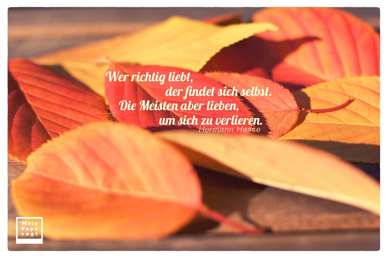 Herbstlaub mit Hesse Zitate und Bilder: Wer richtig liebt, der findet sich selbst. Die Meisten aber lieben, um sich zu verlieren. Hermann Hesse