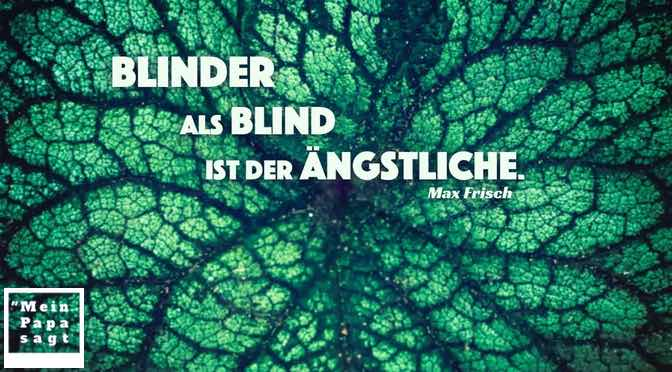 Blinder als blind ist der Ängstliche – Zitate Bilder