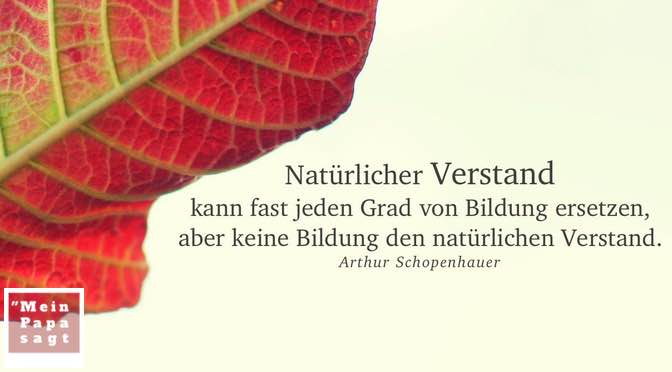 Natürlicher Verstand kann fast jeden Grad von Bildung ersetzen, aber keine Bildung den natürlichen Verstand