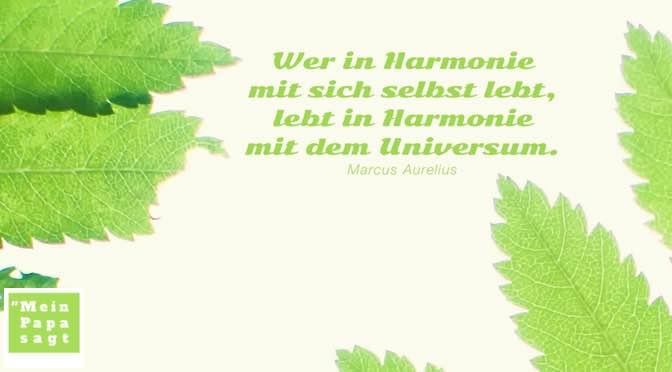 Wer in Harmonie mit sich selbst lebt, lebt in Harmonie mit dem Universum