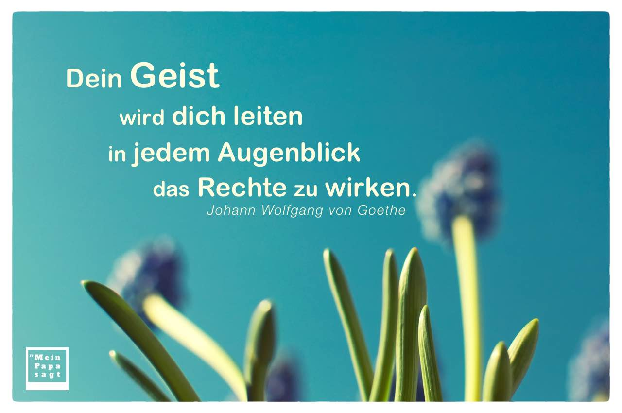 Grün und Blüten mit Goethe Zitate Bilder: Dein Geist wird dich leiten in jedem Augenblick das Rechte zu wirken. Johann Wolfgang von Goethe
