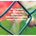 Schnecke am Zaun mit Bierce Zitate Bilder: Ein Feigling ist ein Mensch, bei dem der Selbsterhaltungstrieb normal funktioniert. Ambrose Bierce
