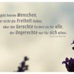 Lavendel vor Himmel mit Börne Zitate Bilder: Es gibt keinen Menschen, der nicht die Freiheit liebte; aber der Gerechte fordert sie für alle, der Ungerechte nur für sich allein. Ludwig Börne