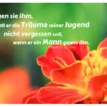 Blumenblüte mit Schiller Zitate Bilder: Sagen sie ihm, daß er die Träume seiner Jugend nicht vergessen soll, wenn er ein Mann geworden. Friedrich Schiller