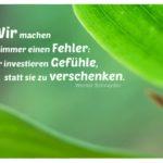 Grüne Blätter mit Schneyder Zitate Bilder: Wir machen immer einen Fehler: Wir investieren Gefühle, statt sie zu verschenken. Werner Schneyder