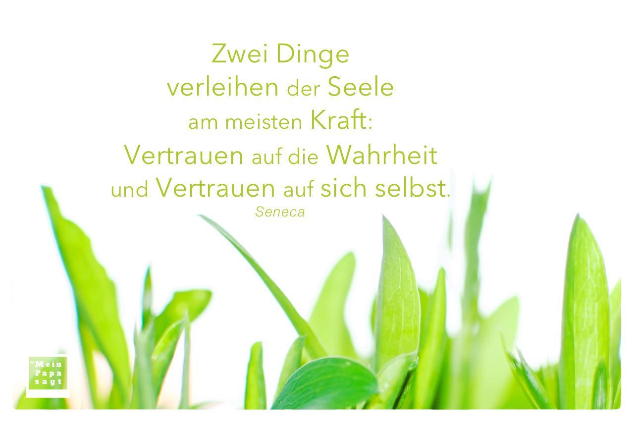 Grünes Wachstum mit Seneca Zitate Bilder: Zwei Dinge verleihen der Seele am meisten Kraft: Vertrauen auf die Wahrheit und Vertrauen auf sich selbst. Seneca