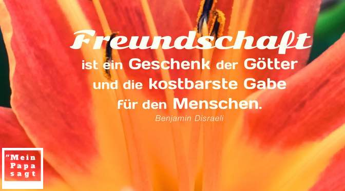 Freundschaft ist ein Geschenk der Götter und die kostbarste Gabe für den Menschen