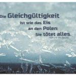 Eiskristalle mit Balzac: Die Gleichgültigkeit ist wie das Eis an den Polen: Sie tötet alles. Honoré de Balzac