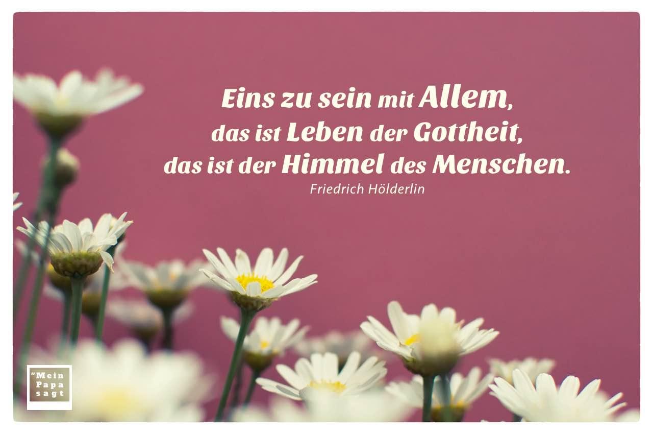 Margeriten mit Hölderlin Zitate Bilder: Eins zu sein mit Allem, das ist Leben der Gottheit, das ist der Himmel des Menschen. Friedrich Hölderlin