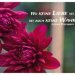 2 Blüten mit Feuerbach Zitate Bilder: Wo keine Liebe ist, ist auch keine Wahrheit. Ludwig Feuerbach