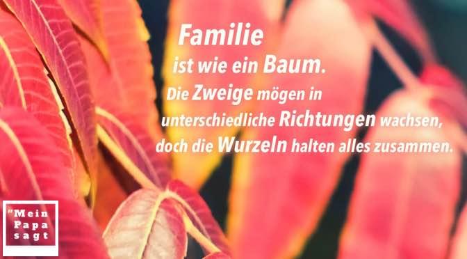 Familie ist wie ein Baum. Die Zweige mögen in unterschiedliche Richtungen wachsen, doch die Wurzeln halten alles zusammen