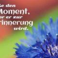 Beitragsbild - Genieße den Moment, bevor er zur Erinnerung wird